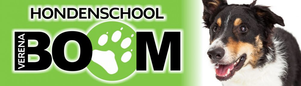 hondenschool boom